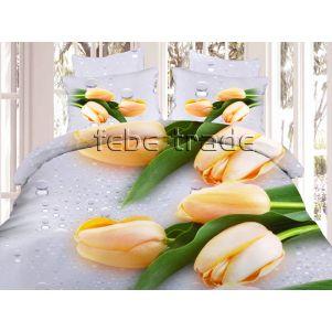 Pościel 3D - Cotton World - FSB-308 - 220x200 cm - 4 cz